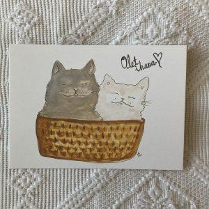 Olet ihana kissat